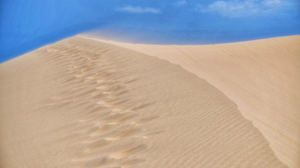 tiểu sa mạc mũi đinh ninh thuận