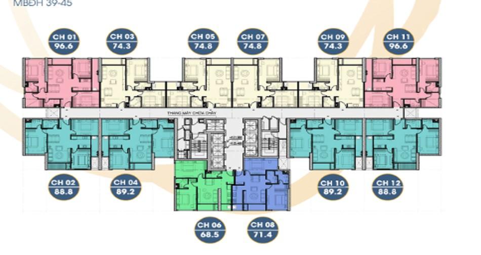 mặt bằng tầng 39-45 terra an hưng